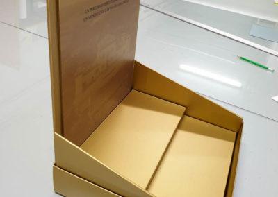 mockupcartoncino2 - Pixel Imola